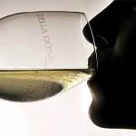 Vuoi imparare a degustare il vino?
