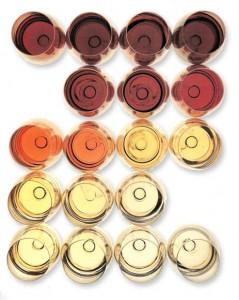 colori vini